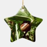 sneaky snail ceramic star decoration