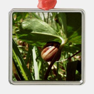 sneaky snail christmas ornament