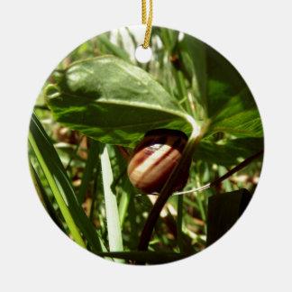 sneaky snail round ceramic decoration