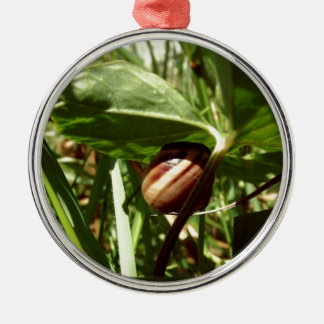 sneaky snail Silver-Colored round decoration
