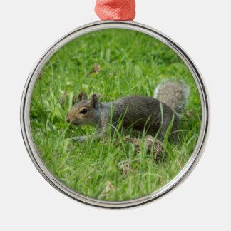 Sneaky Squirrel Christmas Ornament