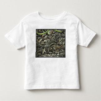 Sneaky Squirrel Toddler Jersey Tee Shirt