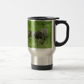 Sneaky Squirrel Travel Mug