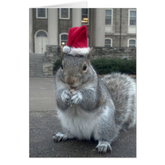 Sneezy the Squirrel Christmas Card