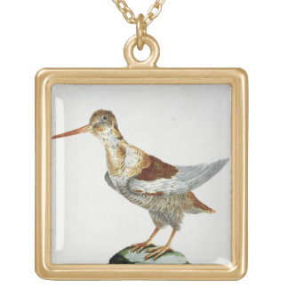 Snipe, c.1767-76 (hand coloured engraving) gold plated necklace