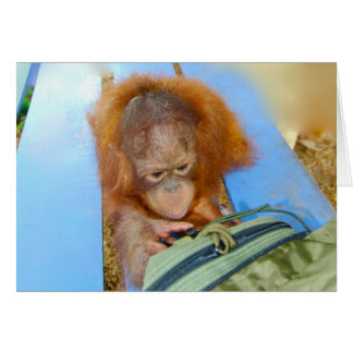 Snoopy Baby Orangutan Cards