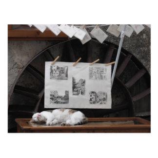 Snooze Postcards