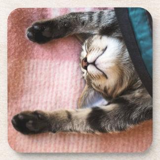 Snoozing Kitten Beverage Coasters
