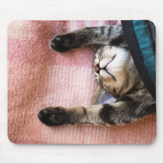 Snoozing Kitten Mouse Mat