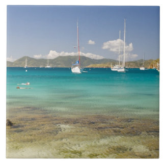 Snorkelers in idyllic Pirates Bight cove, Bight, Tile
