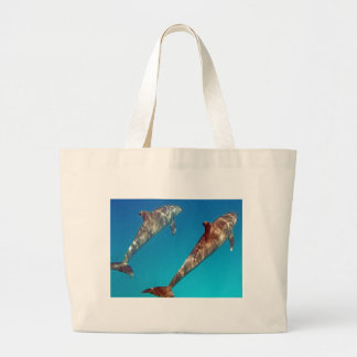 snorkeling with dolphin bag