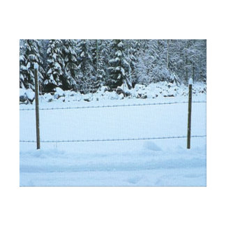 Snow and the barbedwire fence canvas prints