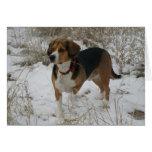 Snow Beagle Winter Greeting Card - Hunting Hound