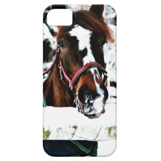 Snow Beauty Case For The iPhone 5