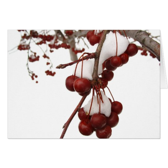 Snow Berry Card