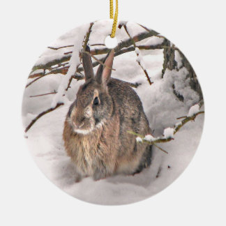Snow Bunny Christmas Ornament