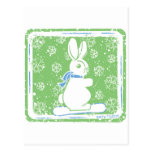 Snow Bunny Snow Boarding Post Cards