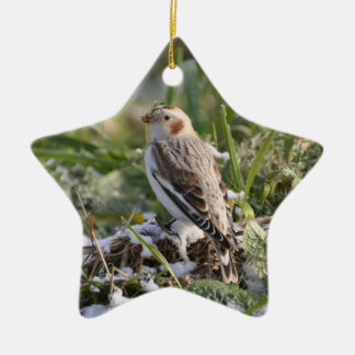 Snow Bunting Ornament