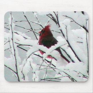 Snow Cardinal Mousepad