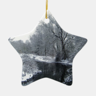 Snow Christmas Ornament