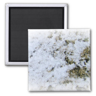 Snow Close-Up Merchandise Refrigerator Magnet