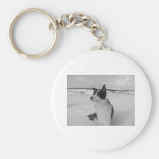 Snow Collie Basic Round Button Key Ring