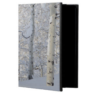 Snow-Covered Aspens, Beartrap-Desolation Ridge iPad Air Case