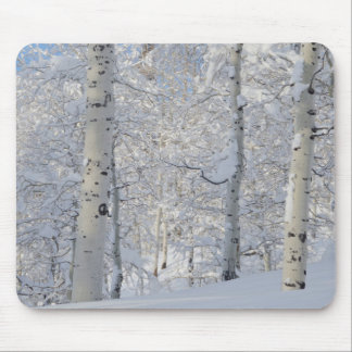 Snow-Covered Aspens, Beartrap-Desolation Ridge Mouse Pad