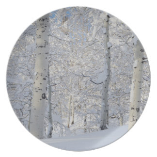 Snow-Covered Aspens, Beartrap-Desolation Ridge Plate