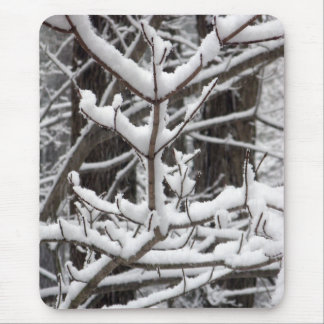 Snow-covered Branches Mouse Pad
