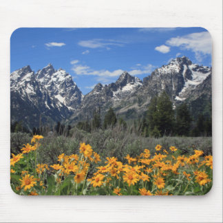 Snow Covered Grand Teton Range with Yellow Flowers Mouse Mat
