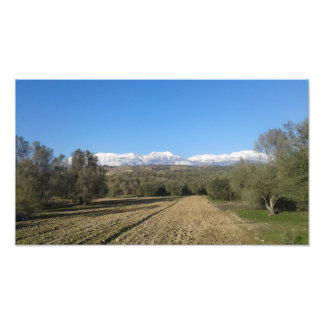 Snow covered Ida Mountains Poster