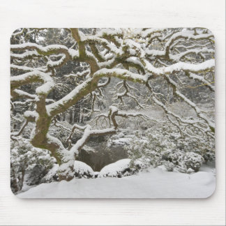 Snow-covered Japanese maple 2 Mouse Pad