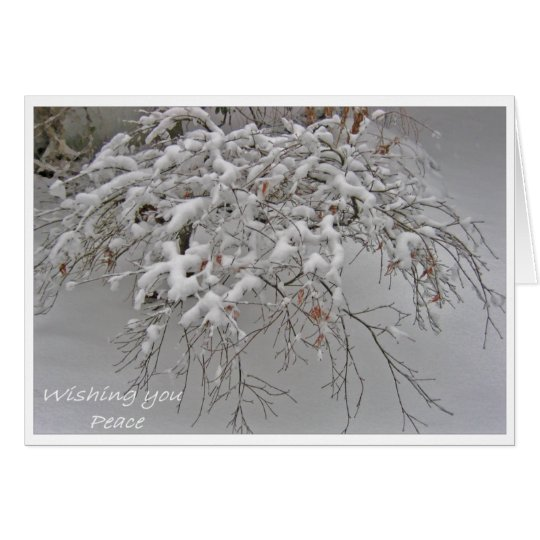 Snow-covered Japanese Maple card