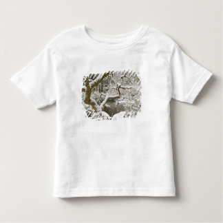 Snow-covered Japanese maple Toddler T-Shirt