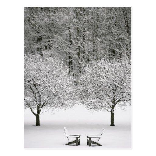 Snow covered landscape postcard