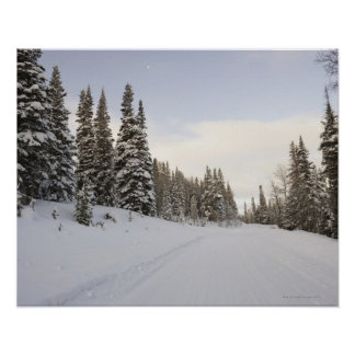Snow-covered landscape poster