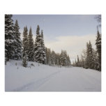 Snow-covered landscape posters