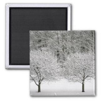Snow covered landscape square magnet