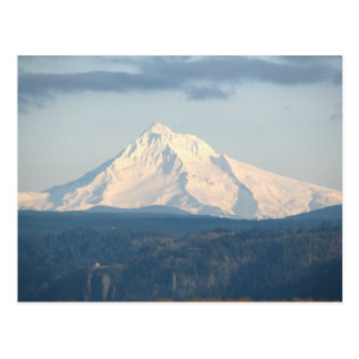 Snow Covered Mount Hood Postcard