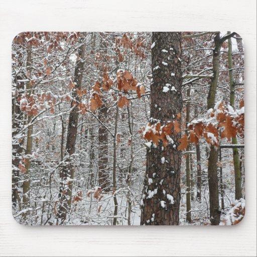 Snow Covered Oak Trees Mousepad