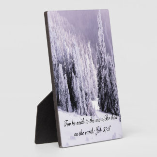 Snow covered photo plaques