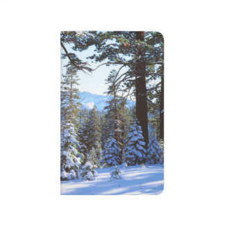 Snow-covered Red Fir trees in the High Sierra 2 Journal