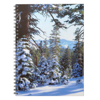 Snow-covered Red Fir trees in the High Sierra 2 Spiral Notebook