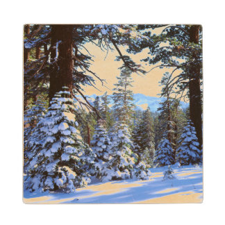 Snow-covered Red Fir trees in the High Sierra 2 Wood Coaster
