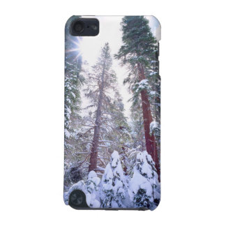 Snow-covered Red Fir trees in the High Sierra iPod Touch 5G Case