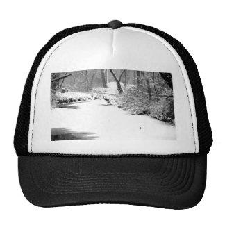 Snow Covered Stony Creek Cap