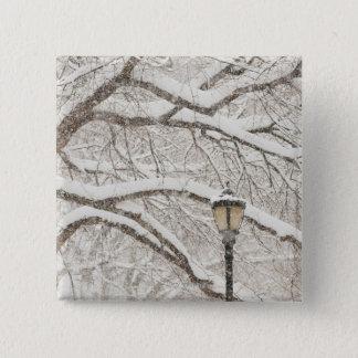 Snow Covered Tree 2 15 Cm Square Badge