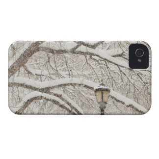 Snow Covered Tree 2 iPhone 4 Case-Mate Cases