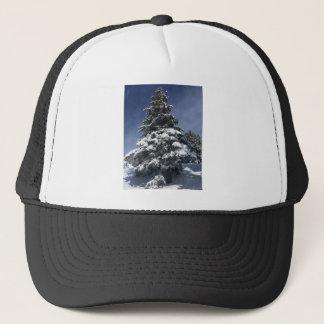 Snow Covered Tree Cap